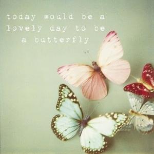 Kelebek Olmak İçin Harika Bir Gün