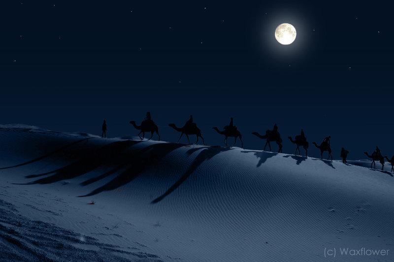 Journey  Under Full Moon