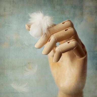 Fly Far Away - Amy Weiss