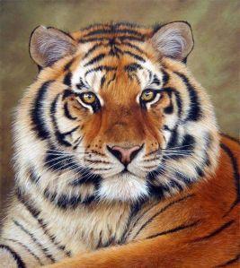 Facing the Tiger...