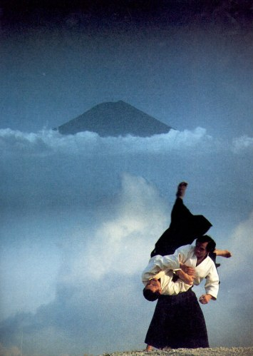Aikido as Inner Critic